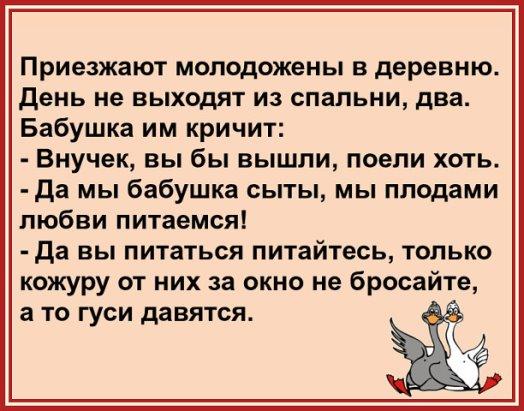Гуси Анекдоты