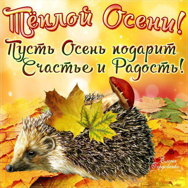 С осенью картинки прикольные поздравления