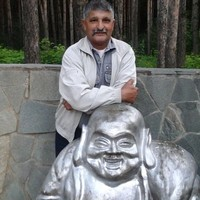 Анатолий, 64 года, Телец, Нижний Новгород